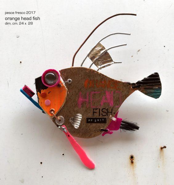 orange-head-fish