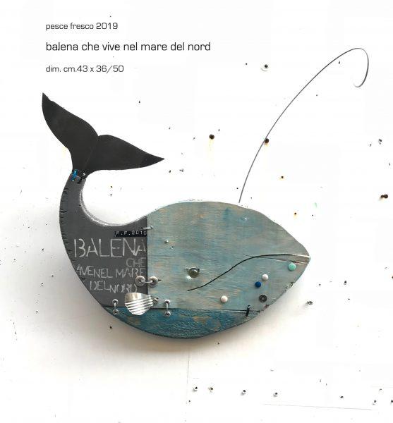 balena che vive nel mar del nord