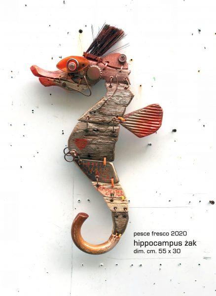 hippocampus zak